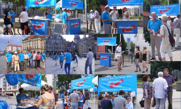 Wahlkampf - Großoffensive in Dresden