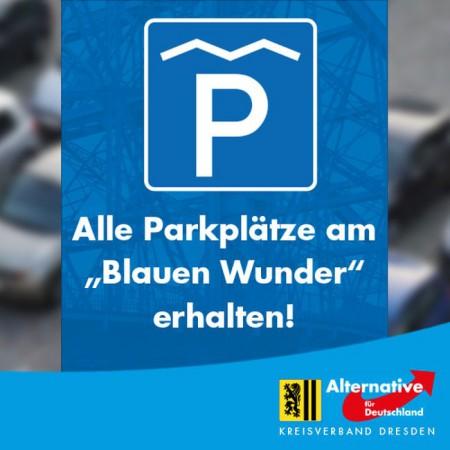 AfD fordert: Alle Parkplätze am BLAUEN WUNDER erhalten!