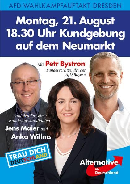 20170821 Plakat Maier Willms Bystron