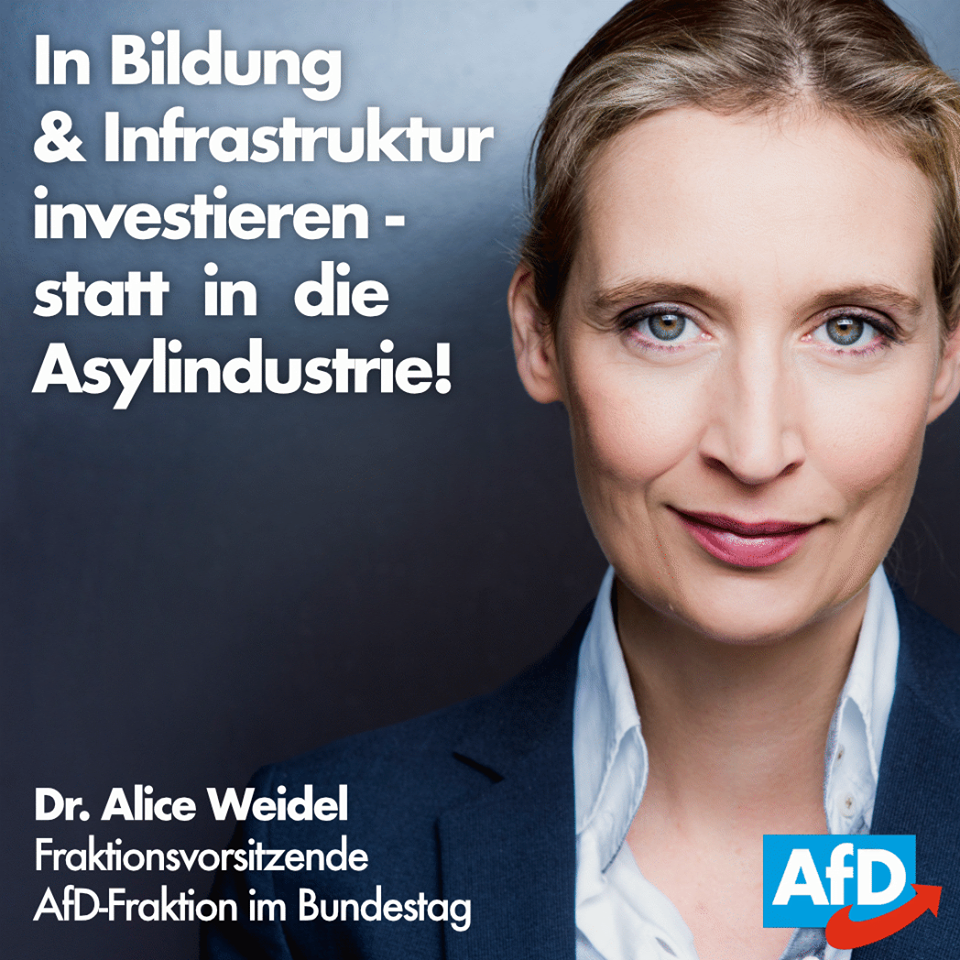 20171102 Alice Weidel