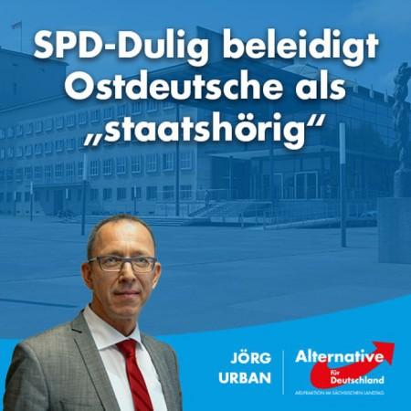 "AfD-Fraktion Sachsen: SPD-Dulig beleidigt Ostdeutsche als ""staatshörig"""