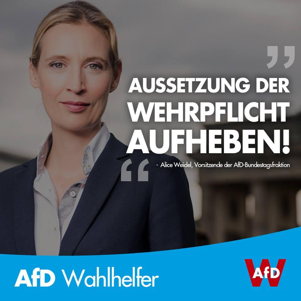 20180724 Alice Weidel Aussetzung der Wehrpflicht aufheben