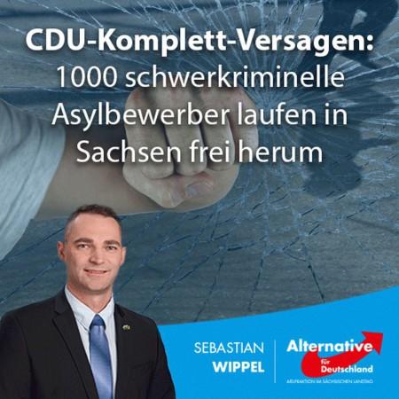Sebastian Wippel: CDU-Versagen der Extraklasse