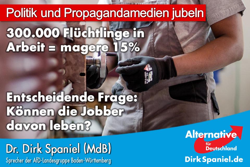 20180822 Dirk Spaniel Flüchtlinge 300000 Jobber