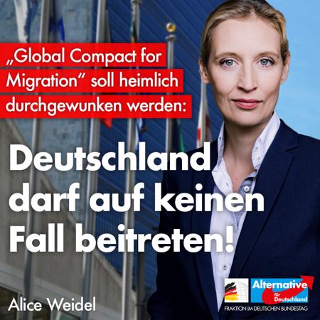 "Alice Weidel: Gegen den Beitritt Deutschlands zum ""Global Compact for Migration"""