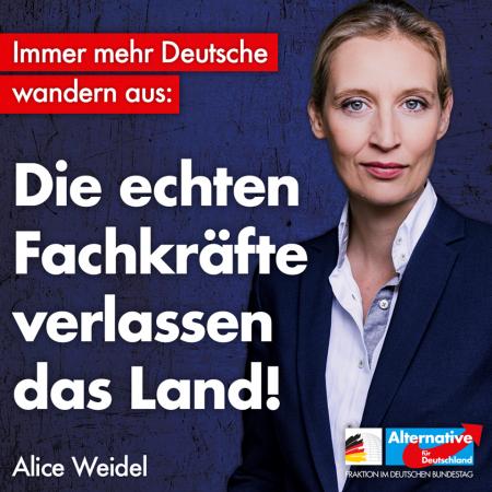 Alice Weidel: Deutsche Fachkräfte gehen, Netto-Empfänger kommen