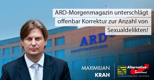 20181102 Maximilian Krah zu MoMa