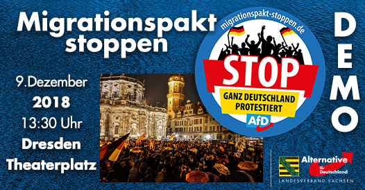 20181209 Demonstration gegen den Migrationspakt
