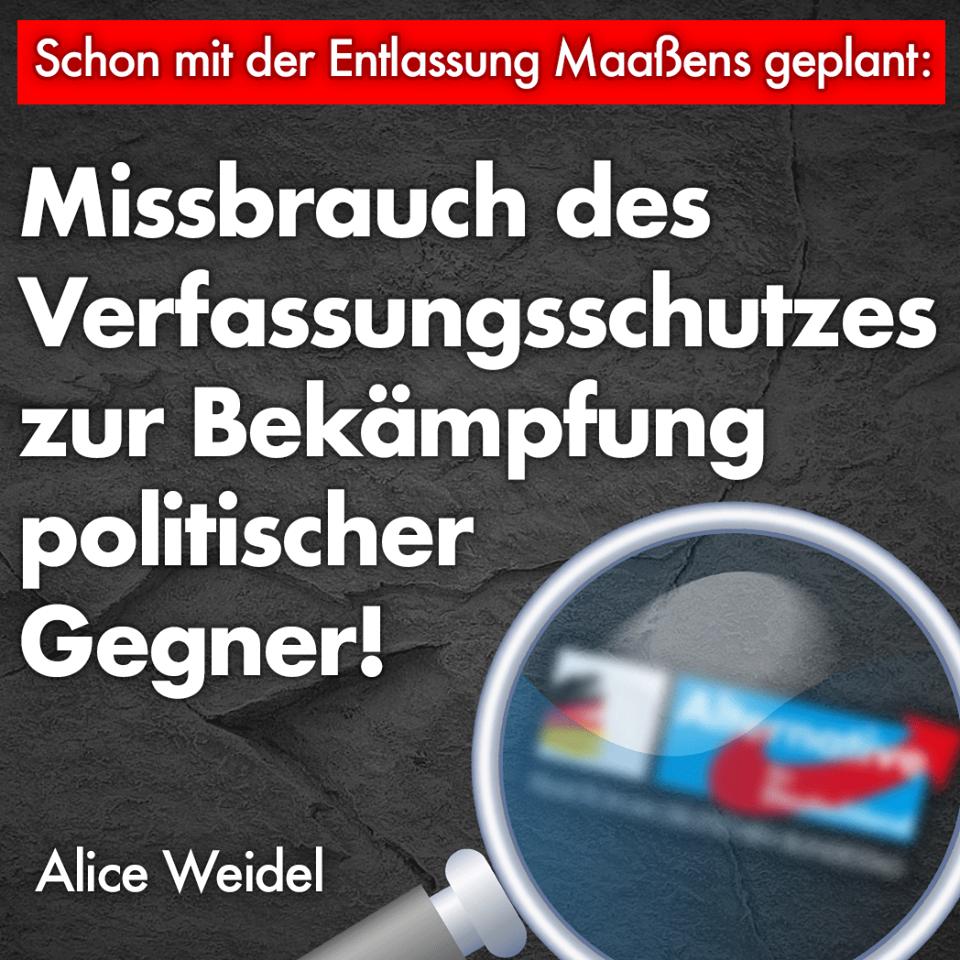20190115 Alice Weidel Prüfung der AfD Missbrauch des Verfassungsschutzes