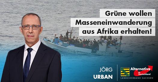 20190122 Jörg Urban Grüne wollen Masseneinwanderung aus Afrika erhalten