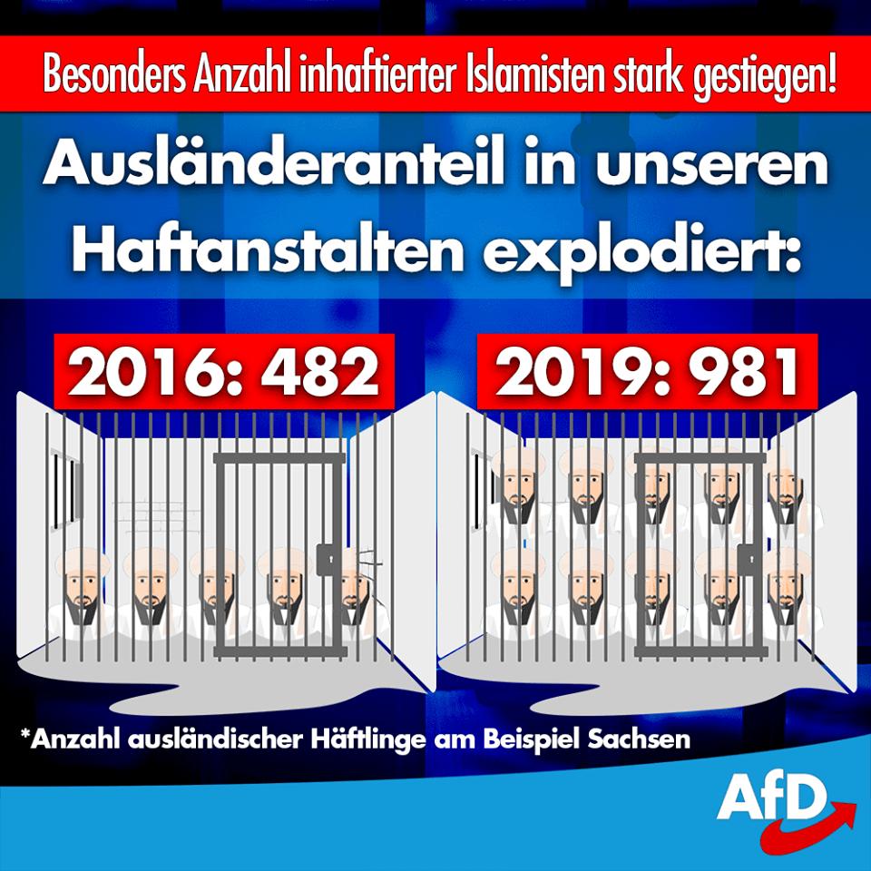 20190205 AfD Migrantenanteil in Haftanstalten