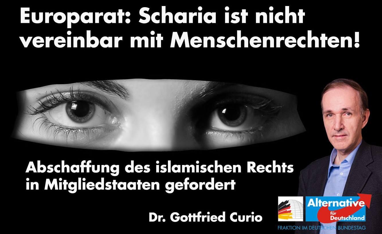 20190205 Gottfried Curio Europarat Scharia