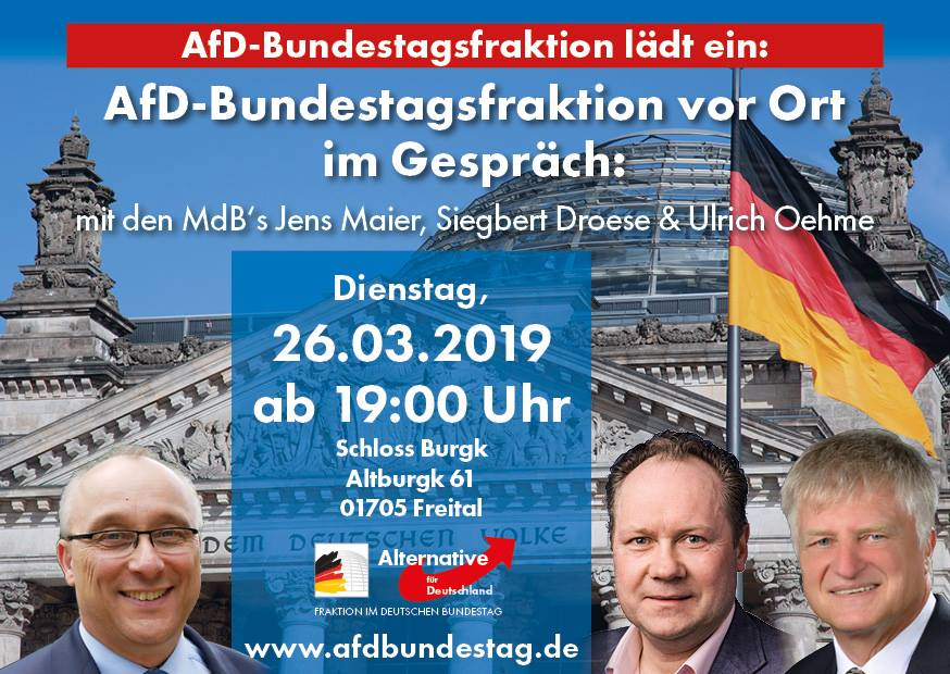 20190326 AfD-Bundestagsfraktion vor Ort