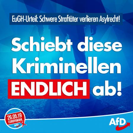 Zahnloses EuGH-Urteil: Raus mit schwerkriminellen Asylbewerbern!